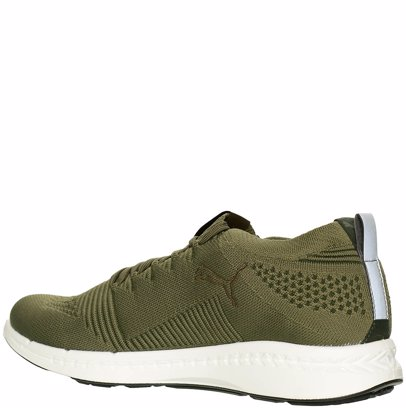 low priced e98b1 87860 Men Ignite Evoknit 3D Sneaker Green