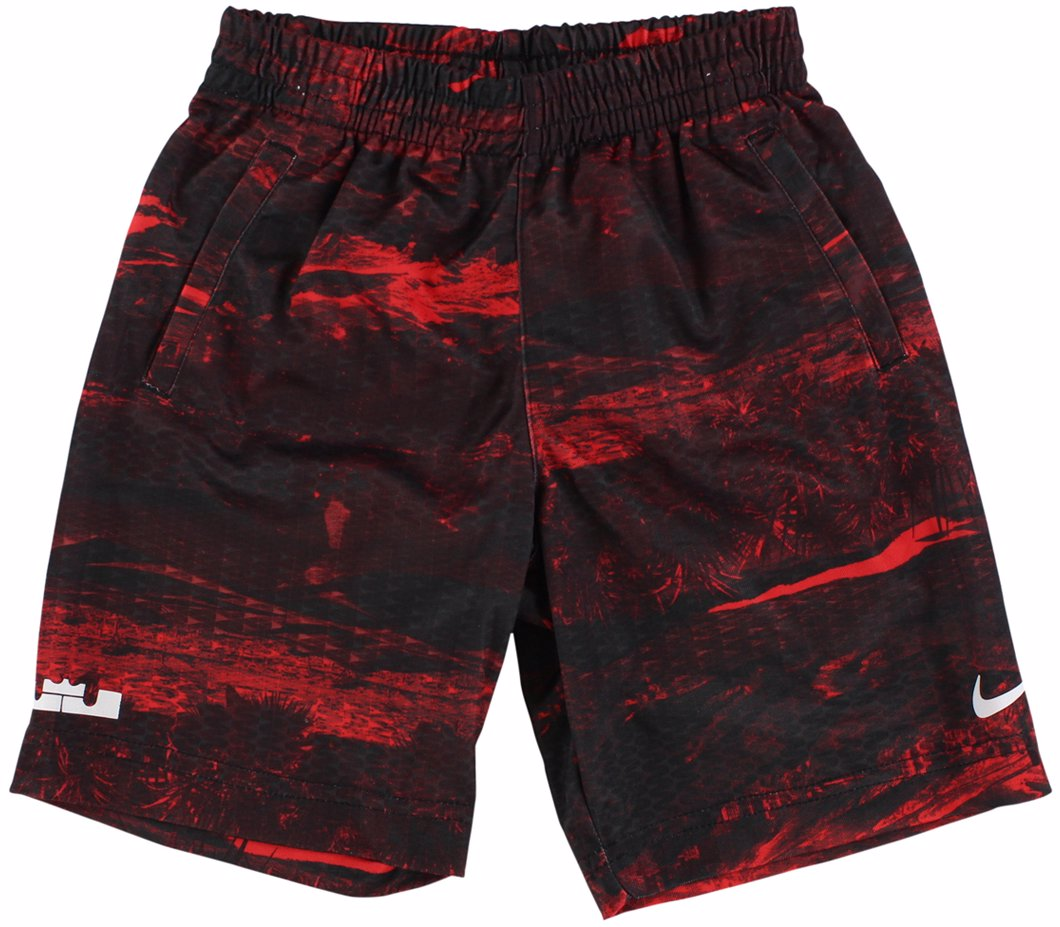 e6f0438dfe6f Preview with Zoom. Nike. Nike Boys LeBron James graphic Basketball Shorts  ...